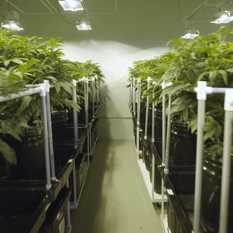 PermaTherm Cannabis Grow Room Wall Panel