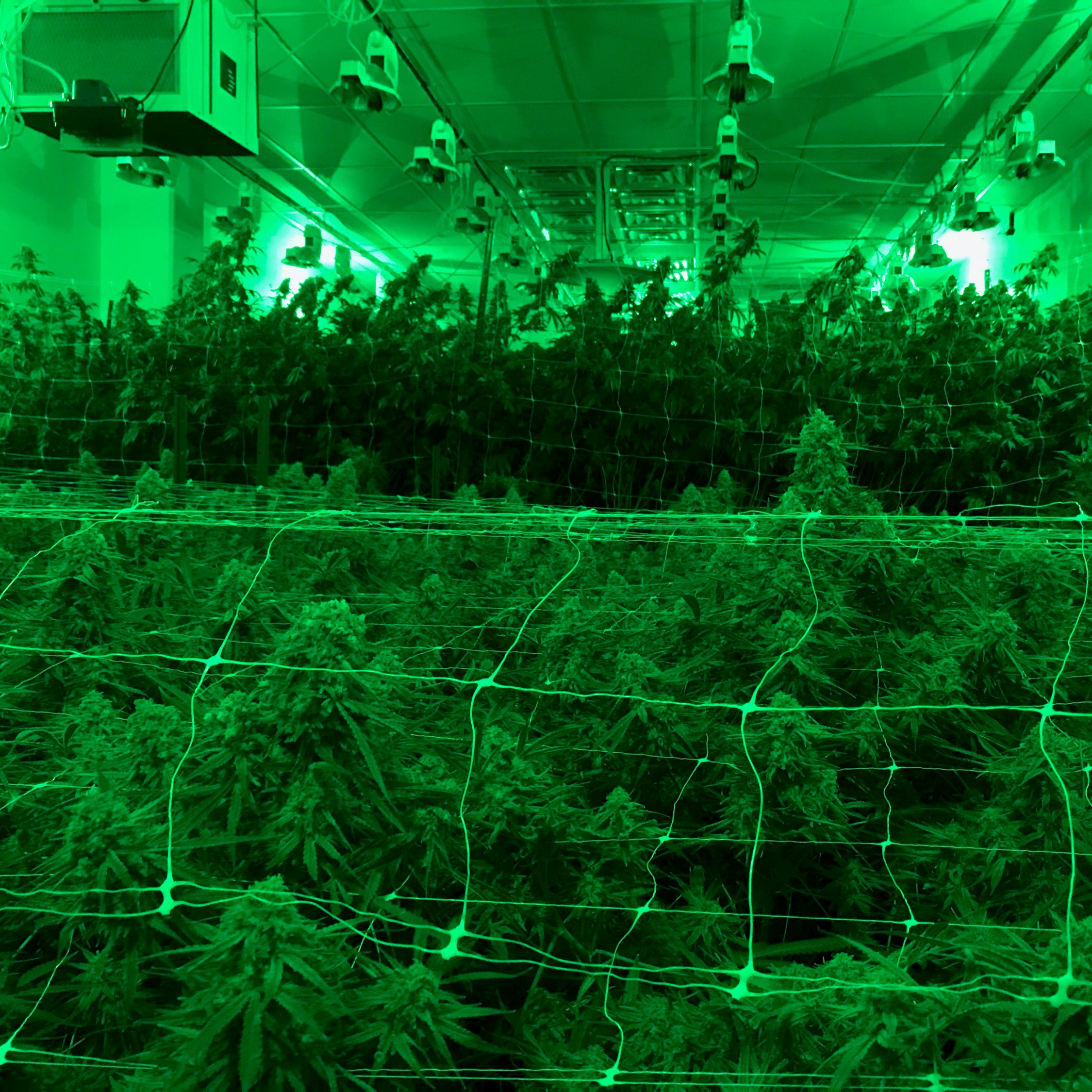 PermaTherm Indoor Grow Room Wall Panels